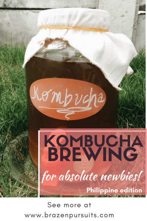 Kombucha brewing for beginners- Philippine edition.