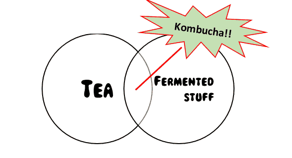 Tea and fermented foods